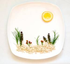 Daniški ryžių putėsiai su vaisių ir uogų salotomis, šokoladu ir riešutais