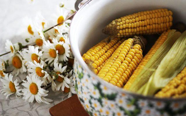 Virti kukurūzai kaip pas močiutę kaime