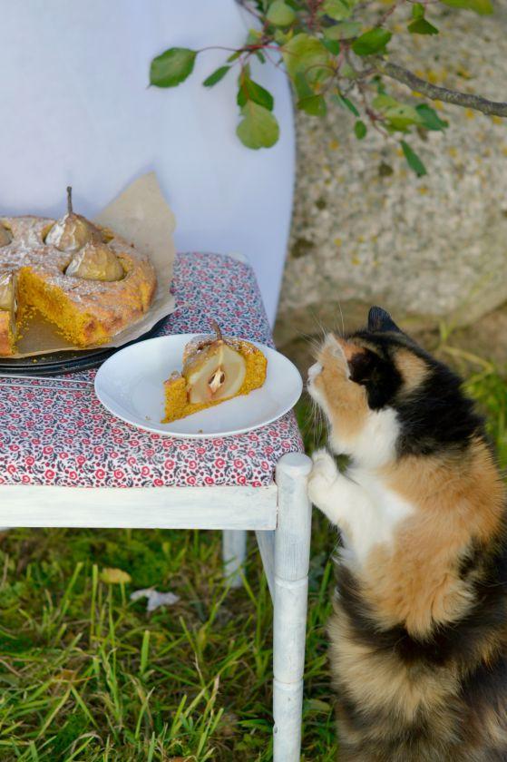 Morkų pyragas su kriaušėmis
