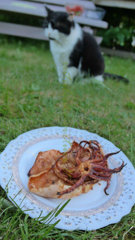Ant laužo kepti kalmarai (marinatas žuviai/jūros gėrybėms)