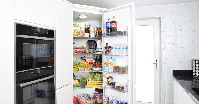 Šaldytuvas, maistas ir … pelėsiai. Kaip jų išvengti?